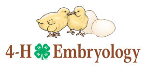 Cover photo for 4-H Embryology Spring Projects