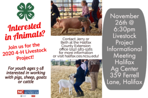 Cover photo for Eastern Carolina 4-H Livestock Show & Sale - April 7-8, 2020