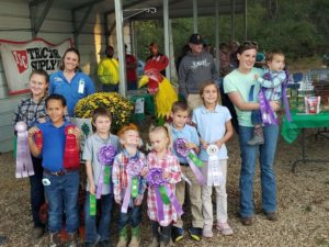 Cover photo for 4-H Poultry Project Entries Open!