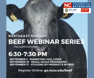 Cover photo for Northeast District Beef Webinar Series