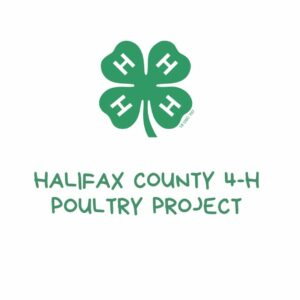 Cover photo for Halifax Harvest Days 4-H Poultry Project Is Underway!